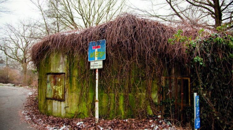 Bunker_zugewachsen