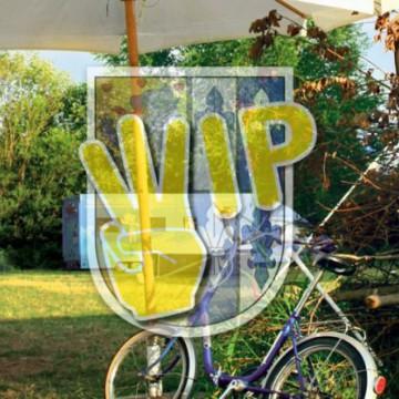 Wip-Titel-022016